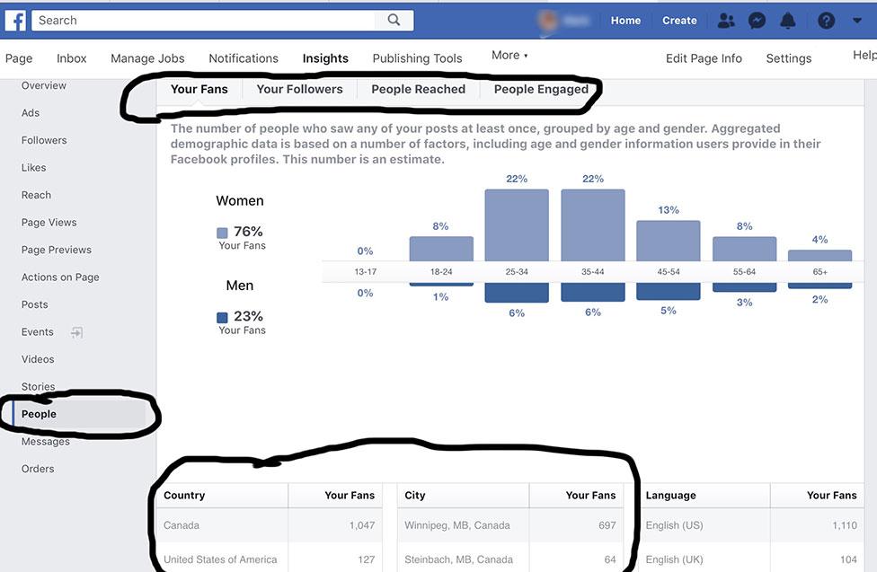 FB Insights