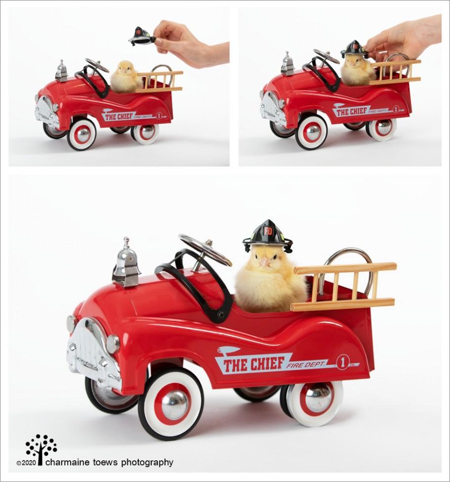 CHICKS FIRE ENGINE