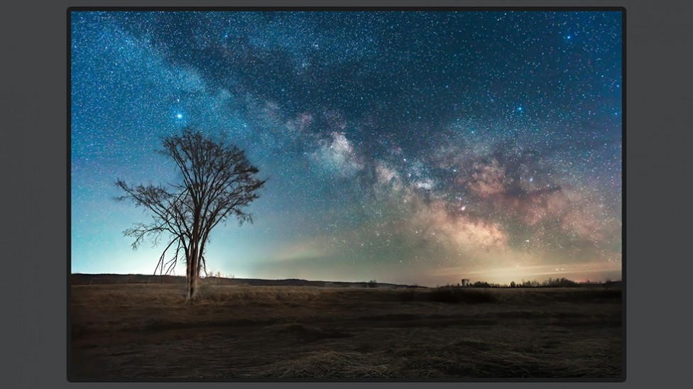 The Milky Way above an Elm tree in Hillsborough, NB, by Don Lewis