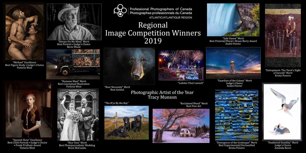 ppoc-at image salon winners 2020