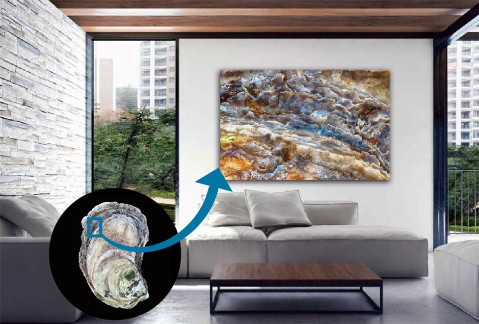 A close up image of an oyster shell, displayed large on a wall as an abstract art piece. By photographer Debbie Brady of Oyster Art.