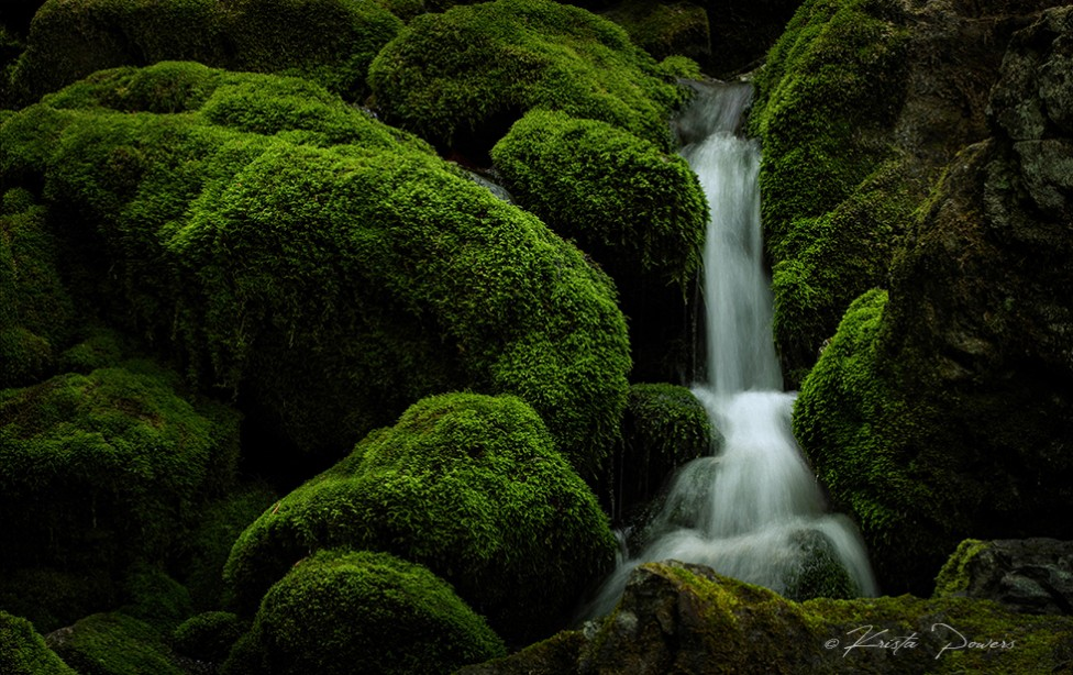 Photo of a waterfall with green moss by Krista Powers