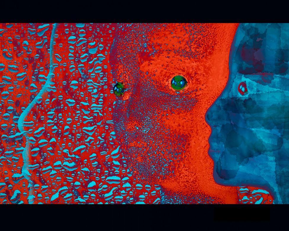 Neuroimaging by Mary Ellen Nealis